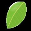 お茶の葉の画像